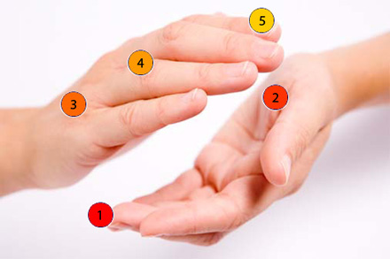microorganisms on hands
